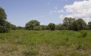 Environment surrounding Fort Saint-Louis.